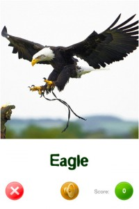 touch-discover-animals-iphone-app-review-eagle