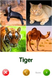 touch-discover-animals-iphone-app-review-tiger