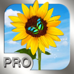 photo manager pro icon